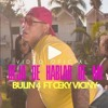 Bulin 47 Ceky Viciny - Deja De Hablar De Mi Intro Break Steady DJImaEdit 122Bpm