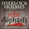 Sherlock Holmes And The Adventure Of The Ruby Elephants - Retail Example