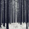 Brid Aien // Techno Session Vol. 1 Mix [FREE DOWNLOAD]