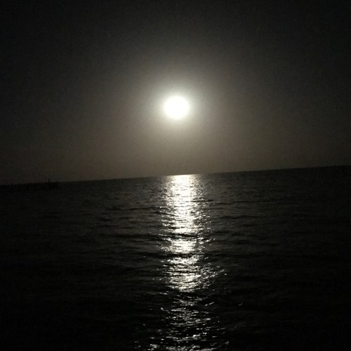 Moon on the River القمر على النهر