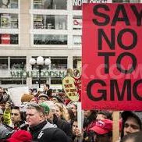 Tara Cook-Littman on the fight against GMOs