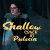 Shallow (Lady Gaga & Bradley Cooper cover) FREE DOWNLOAD
