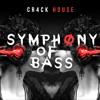 Symphony Of Bass (Original Mix)