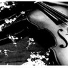"""Violin Tears"" - Sad Type Beat | Instrumental [FREE DOWNLOAD]"