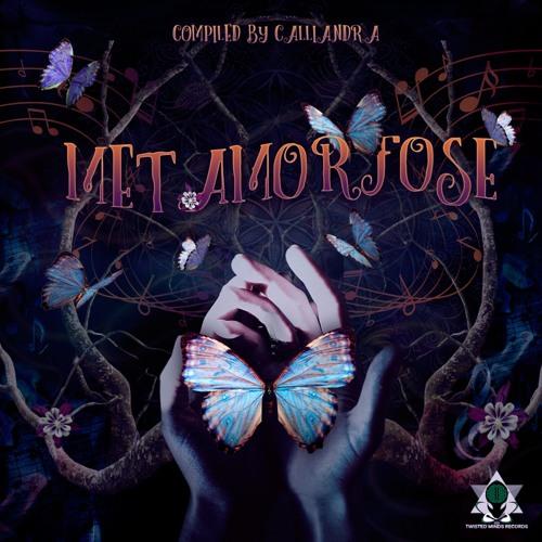 Oxóssi - V.A. Metamorfose (Compilado por DJ Calliandra @ Twisted Minds Records)