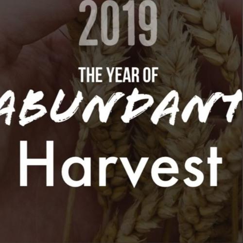 The Year of Abundant Harvest - Part 3 by Faith SF Podcast