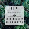 SIP Ep. 3 - 2019 Resolutions & Daily Habits