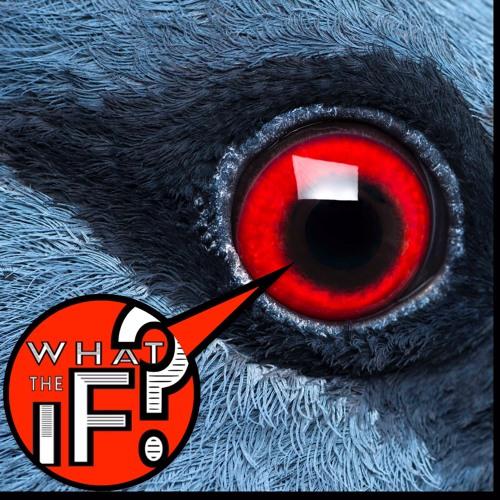 78 - PIGEON VISION