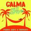 PEDRO CAPO, FARRUKO - CALMA (PREZZ LATIN REMIX) free download link in description