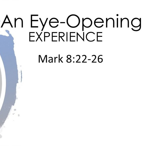 An Eye Opening Experience  ||  December 30th, 2019