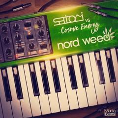Satori & Cosmic Energy - Nordweed