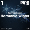 Exclusive Mix #55 | RICD - Harmonic Winter | 1daytrack.com