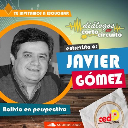 Bolivia en Perspectiva - Entrevista a Javier Gómez, Director Ejecutivo del CEDLA