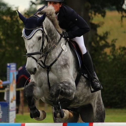 Das Glück Der Erde - Von sportpsychologischem Coaching im Pferdesport