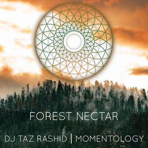 DJ Taz Rashid & Momentology - Forest Nectar