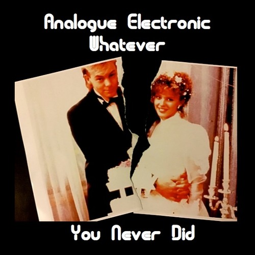 "You Never Did - featuring Vinnie Poptone - 7"" single"