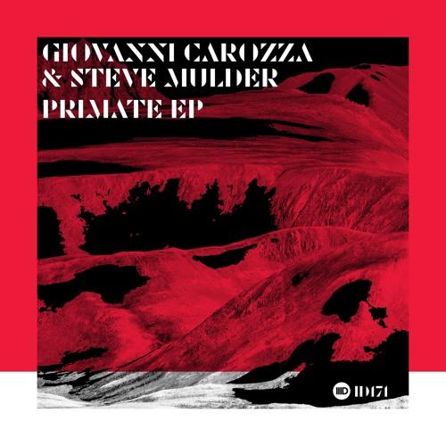 ID171. 1. Giovanni Carozza & Steve Mulder -Primate