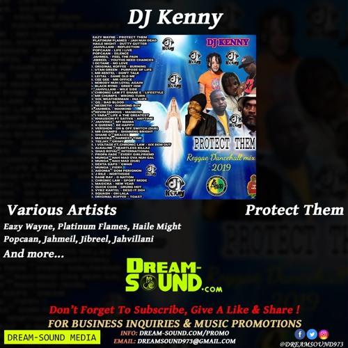 DJ Kenny - Protect Them (Reggae & Dancehall Mixtape 2019) by Dream