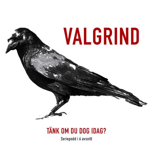 Valgrind - Teaser