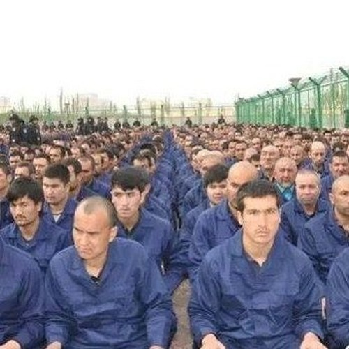 What's happening to the Uyghur in China?