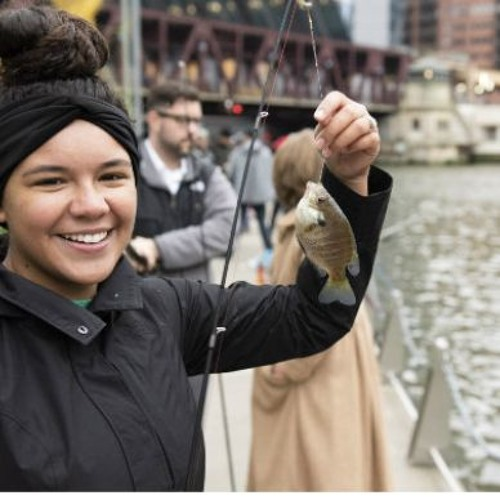 Protecting the Chicago River - Friends of the Chicago River