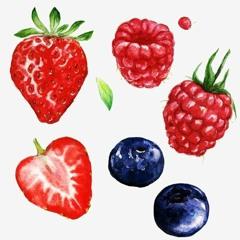 Berries - poonchew