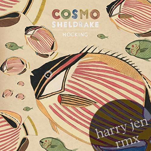 cosmo sheldrake - hocking (harry jen rmx)