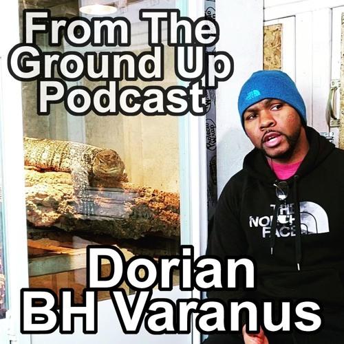 Ornate Monitors with Dorian AKA BH Varanus