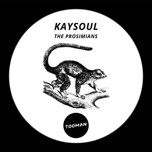 KaySoul - The Prosimians EP [TMN009] - Preview