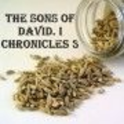 The Sons Of David. I Chronicles 3