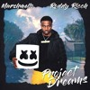 Marshmello ft Roddy Rich - Project Dreams (slowed + reverb)