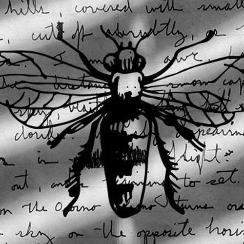 Prof Abi Curtis - Creative Writing: Pollination and Transformation
