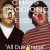 All Praise Due. Feat E.coli Vocals,lyrics. Music,Guitar by Chris Paccione Titanium Will Productions