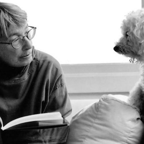 Tribute to Mary Oliver