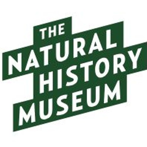 The Trojan Horse Of The Museum World: An Interview With Steve Lyons of The Natural History Museum