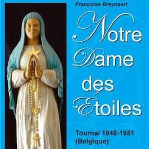 Sanctuaires du Monde - 2019-01-30 Notre Dame des Étoiles, Tournai (Françoise Breynaert)