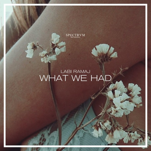 Labi Ramaj - What We Had (Out Now)