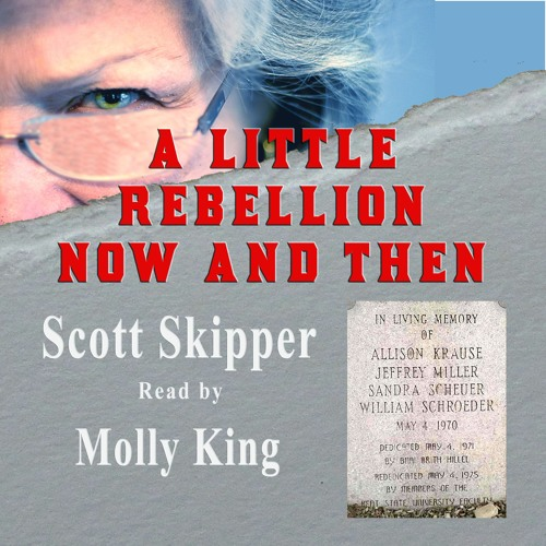 A Little Rebellion Now and Then by Scott Skipper read by Molly King