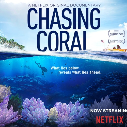 Chasing Coral (Additional Music)