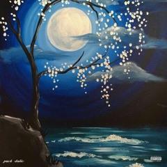 Midnight (prod. MD.FL)