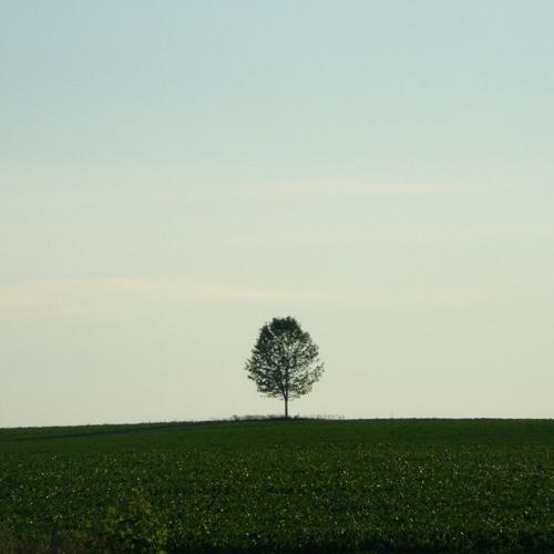 Ohmtrix - Solitude