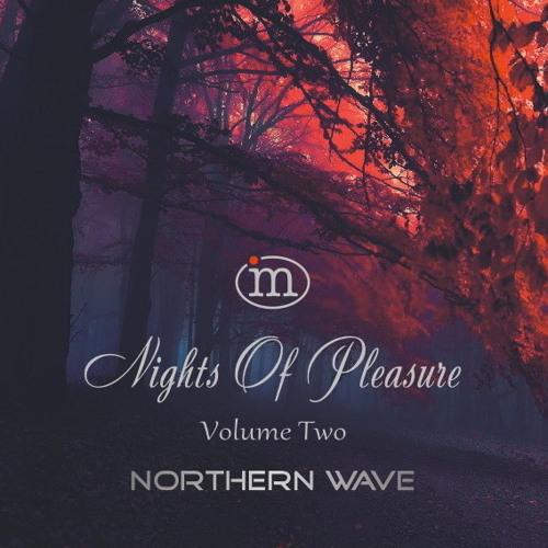 Northern Wave - Nights Of Pleasure. Volume Two (2019)
