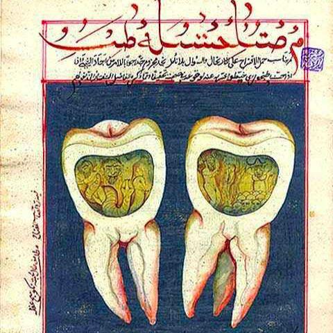 Forging Islamic Science   Nir Shafir