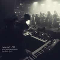 pølaroit LIVE @ Stil Vor Talent's Winter Warmer | Ritter Butzke Berlin | 26.1.19 Artwork
