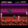 Battletoads [NES] -