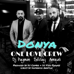 Seelay & Amirali, DJ Combo, Fizo Faouez, DJ Payman - Donya (Radio Edit) mp3