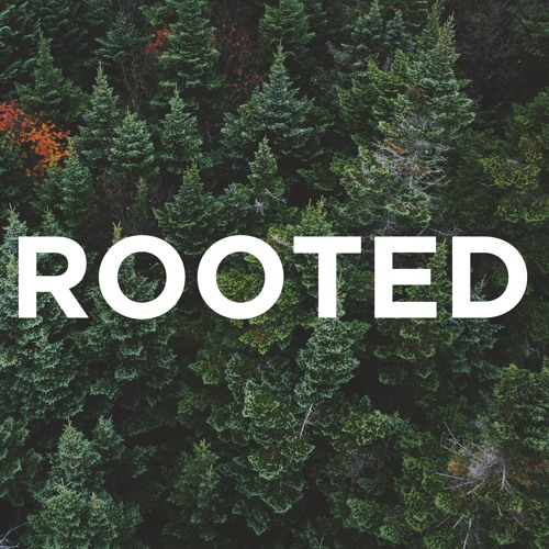 2-3-2019 - Rooted in Christ