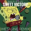 David Eisley - Sweet Victory (Metasine Remix)