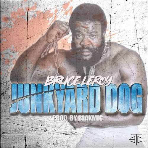 BRUCE LEROY - JUNKYARD DOG