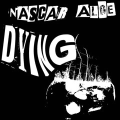 Nascar Aloe - Dying